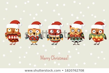 Bird family with santa hat stock photo © qiun