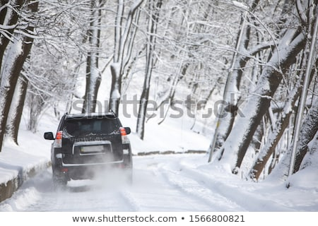 SUV in snow Stock photo © alptraum