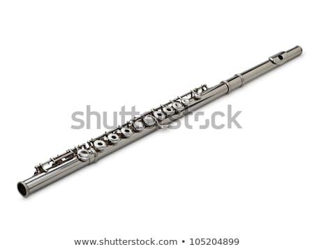 銀 フルート 楽器 極端な 浅い 金属 ストックフォト © ultrapro