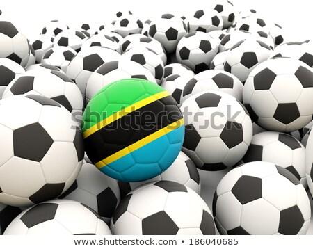 Zászló Tanzánia futball csapat vidék Stock fotó © MikhailMishchenko