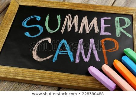 campo · estivo · bambini · estate · studenti · gruppo · divertimento - foto d'archivio © lightsource