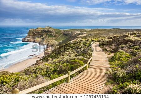 良い · 希望 · 海岸 · 半島 · 南アフリカ · ポイント - ストックフォト © anna_om