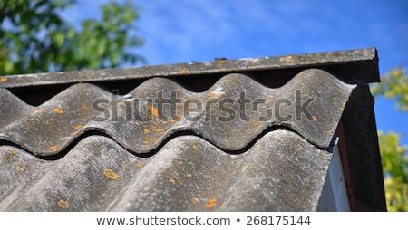 corrugated asbestos roof tiles stock photo © stevanovicigor