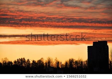 sunrise over white cloudscape in the sky stock photo © meinzahn