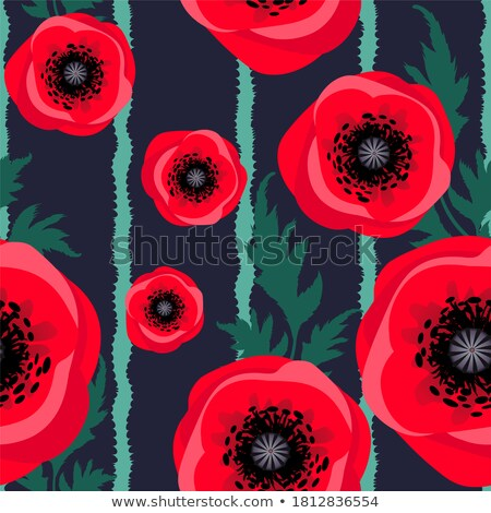 Poppy abstract Stock photo © Anettphoto