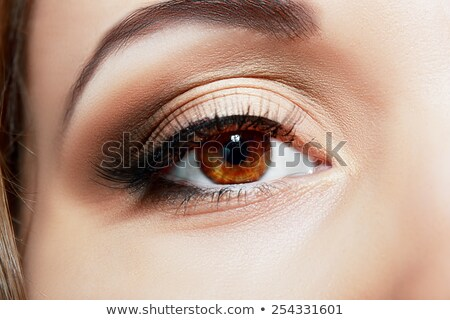 closeup of womanish eye with makeup stock photo © vlad_star