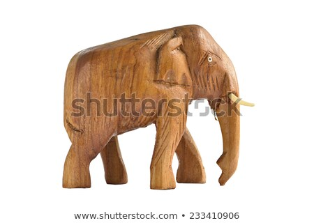 Elefante madeira foto beleza belo Foto stock © Dermot68