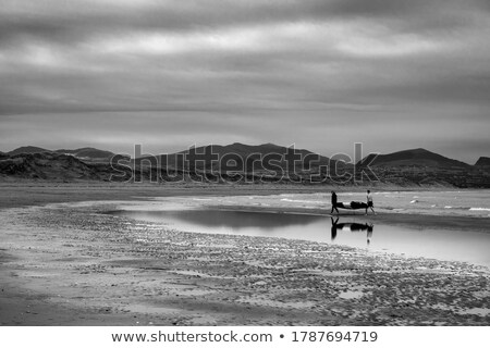 Dramatique vue sauvage paysage eau nature Photo stock © 1Tomm