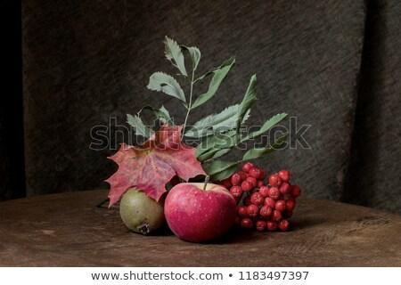 Gyökér zöldségek csendélet asztal egyezség répák Stock fotó © frannyanne