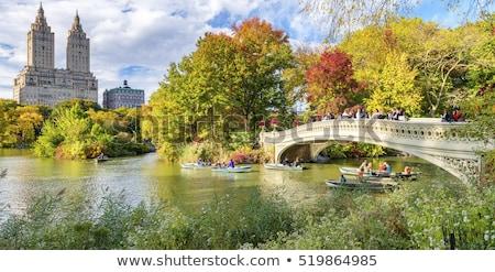Najaar kleuren Central Park foto vallen dag Stockfoto © rmbarricarte
