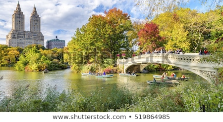 reservoir · Central · Park · New · York · naar · kant · water - stockfoto © rmbarricarte