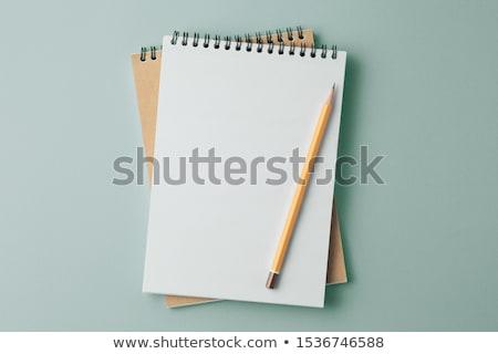 Pencil on open blank notebook Stock photo © punsayaporn