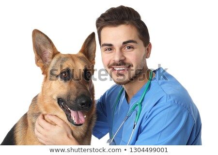 mosolyog · állatorvos · megvizsgál · aranyos · kutya · orvosi - stock fotó © wavebreak_media