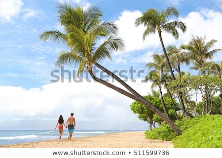 kaanapali beach maui hawaii tourist destination stock photo © mariusz_prusaczyk