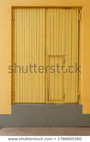 Przednie drzwi szary podwoić skrzydła drewna domu Zdjęcia stock © vlaru