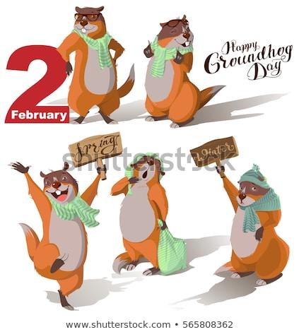 Happy Groundhog Day. Marmot holding February 2 Stock photo © orensila