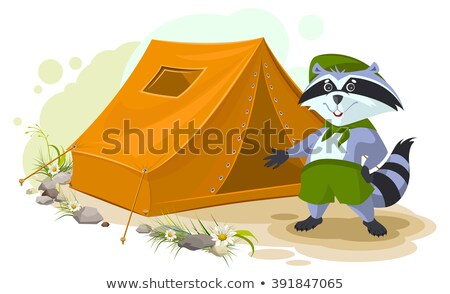 Summer holiday camp. Scout raccoon standing near tent. Raccoon tourist tent set. Camping Stock photo © orensila