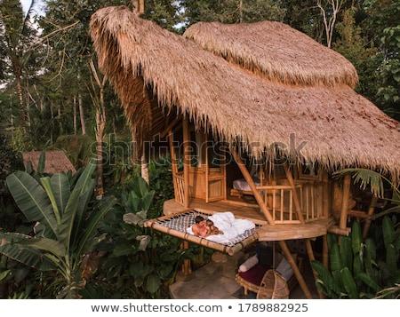 tropical jungle in Indonesia Stock photo © meinzahn