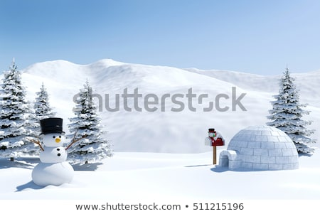 Scene with igloo on snowing day Stock photo © bluering