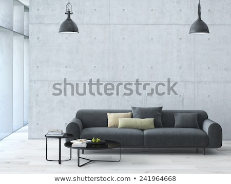 Modern room in minimalistic style with sofa Stock photo © Kzenon