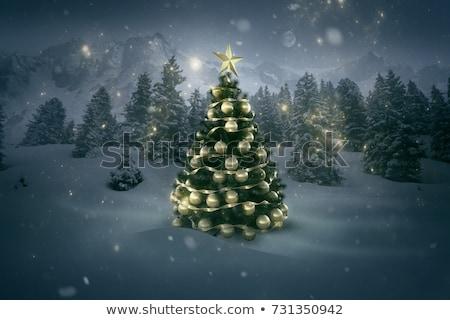 Karácsonyfa illusztráció arc természet fény éjszaka Stock fotó © adrenalina