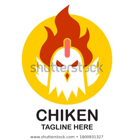 fire rooster Stock photo © blackmoon979