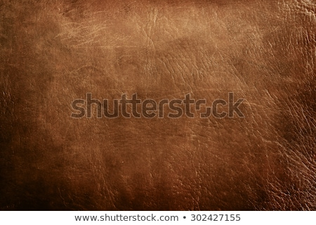 Old synthetic leather Stock photo © day908