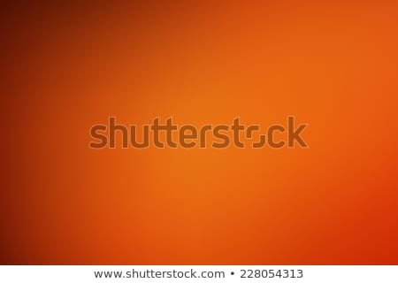 digitale · vector · abstract · lege · bruin - stockfoto © frimufilms