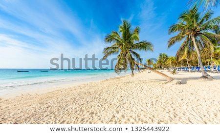 tulum paradise stock photo © ca2hill
