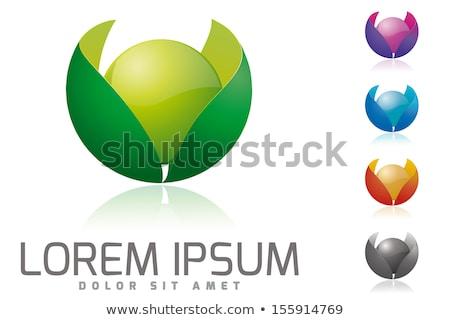 Vibráló virág logoterv üzlet szín modern Stock fotó © SArts