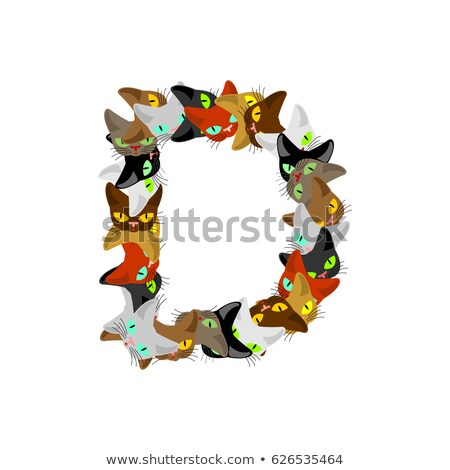 letter I Cat font. Pet alphabet symbol. home animal ABC sign Stock photo © MaryValery