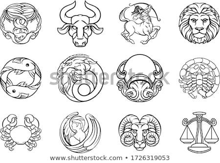 oroscopo · zodiaco · segni · set · bianco · nero · cartoon - foto d'archivio © krisdog