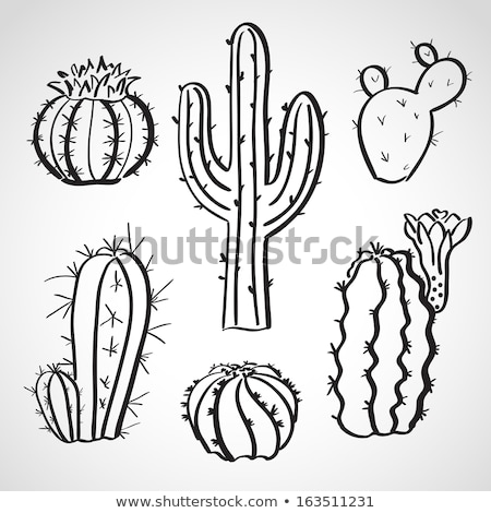 Doodle Mexico symbol collection  isolated in black and white for Stock photo © balasoiu