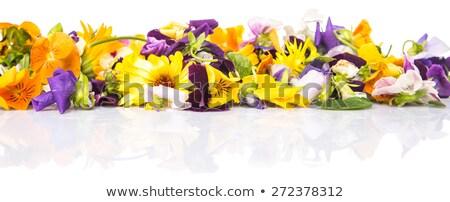 Сток-фото: съедобный · цветок · металл · пластина · старые
