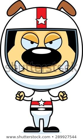 Cartoon colère voiture de course pilote chiot regarder Photo stock © cthoman