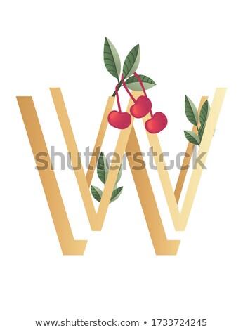 List w roślin zielone czerwony wektora ikona Zdjęcia stock © blaskorizov