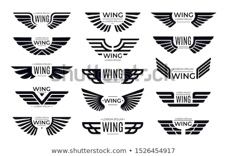 aviator wing sign symbol Stock photo © vector1st