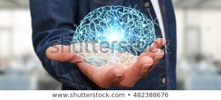 Férfi tart emberi agy kéz üzletember logisztika Stock fotó © ra2studio