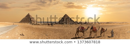 Panorama of pyramids Stock photo © Givaga