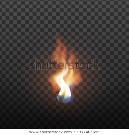 Realistic Candlelight Brush Fire Element Vector Stockfoto © pikepicture