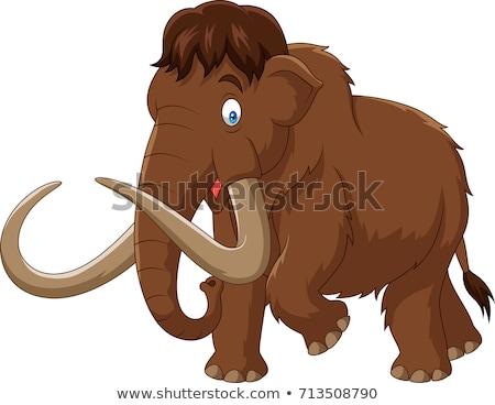 Mammoth Cartoon Character Stock photo © hittoon