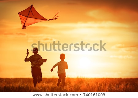 Happy child launches a kite Stock photo © Anna_Om