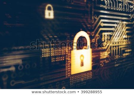 Hacker digitális biztonság internet technológia háló Stock fotó © Elnur