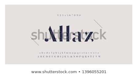 Nowoczesne elegancki złoty chrzcielnica alfabet typografii Zdjęcia stock © Andrei_