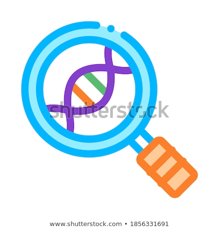 Magnifier Glass Molecule Lab Biomaterial Vector Stock photo © pikepicture