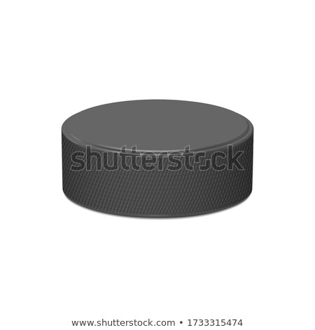 3d hockey rink with gates and black puck isolated Stock photo © MarySan
