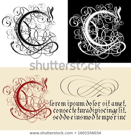 Dekoracyjny gothic litera c kaligrafia wektora eps8 Zdjęcia stock © mechanik