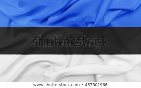 Festett Észtország zászló integet szél köztársaság Stock fotó © oxygen64
