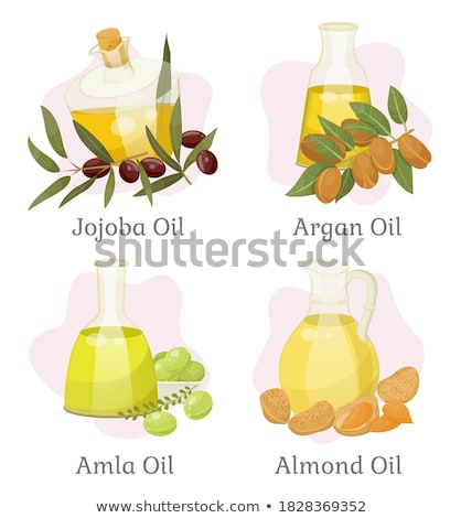 Hair Oil Almond Nut and Liquid in Bottle Vector Stock photo © robuart