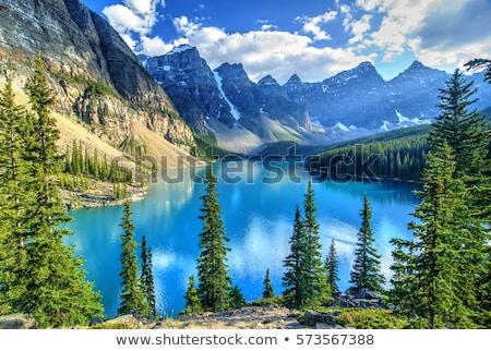 Canadian Rockies Stock photo © broker